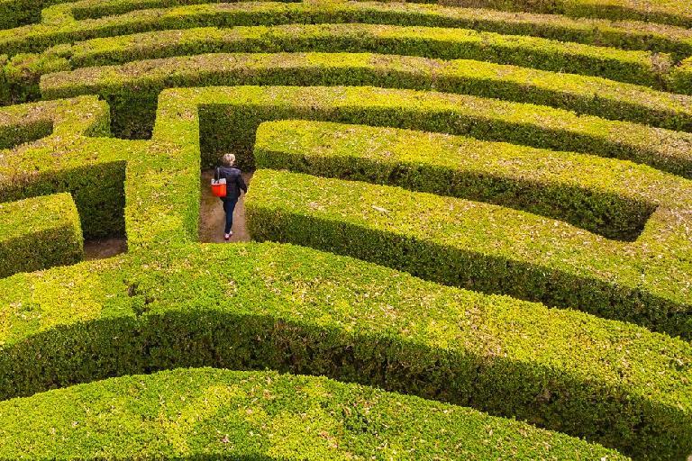 Enter the maze