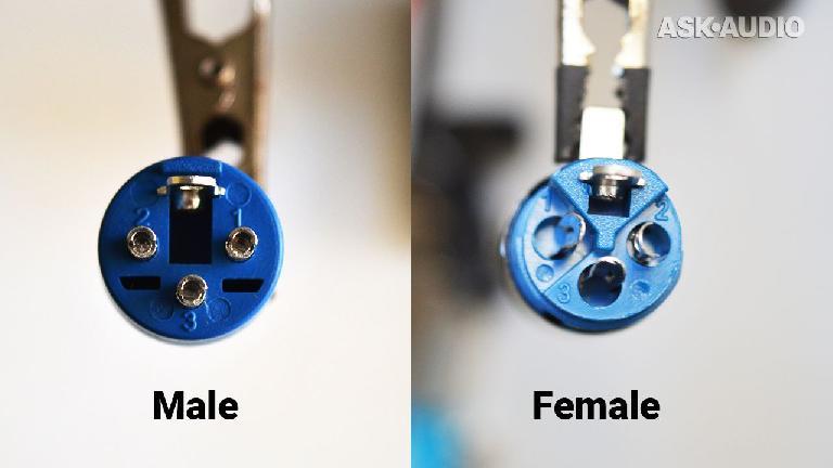 female male XLR pin layout