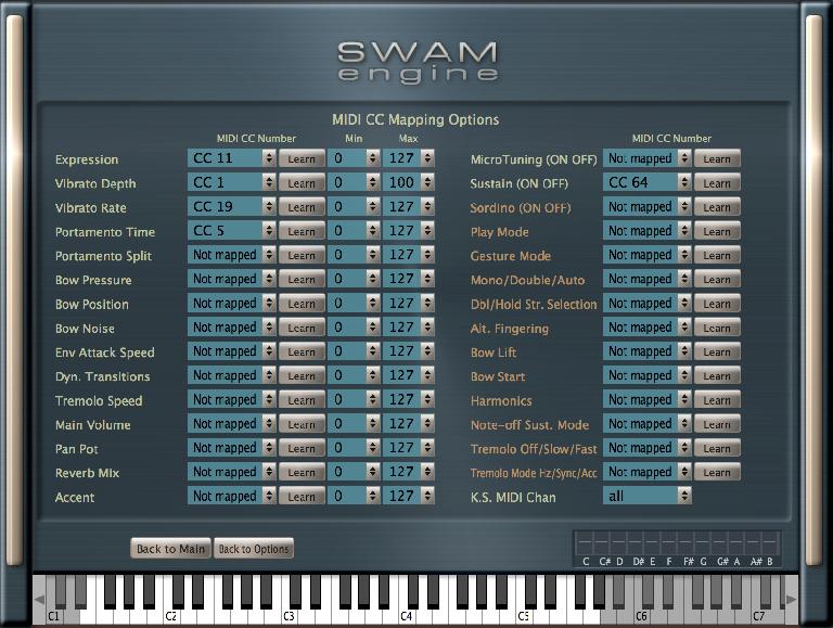 swam options