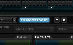 The Palindrome looping button is an essential parameter
