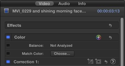 In the Correction 1 line, that's Add Color Mask, Add Shape Mask, Reset Correction (the arrow) and Show Correction.