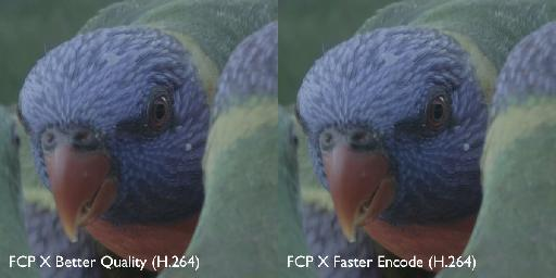 A comparison between high quality and faster encode'