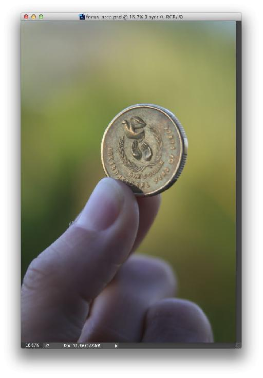 Here's the original image of an Australian $1 coin.