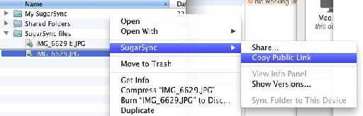 This is how copying a public link works in Sugarsync.