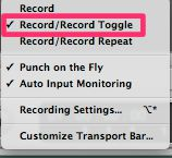 Record/Record Toggle is enabled.