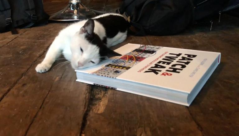 Elevator Sound Patch & Tweak book with cat