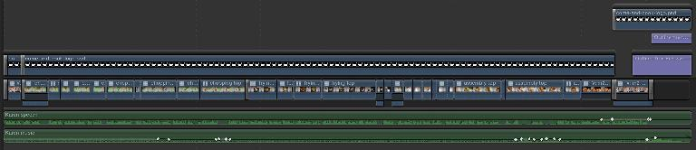 The final locked timeline for this job, including separate voice and music tracks.
