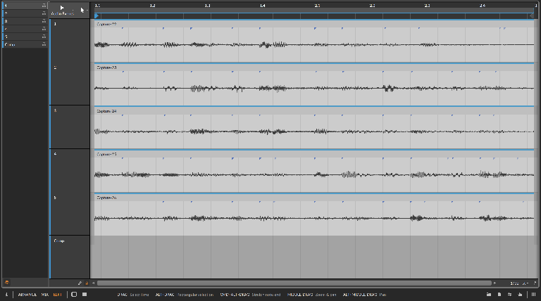 PIC 6: Multi-Clip audio prepared for compilation editing.