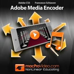 Adobe Media Encoder: An essential too included with every Adobe CS suite.