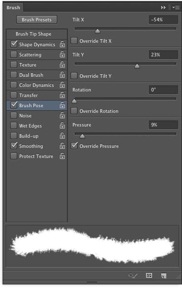 The Brush pose settings section in the Brush panel.