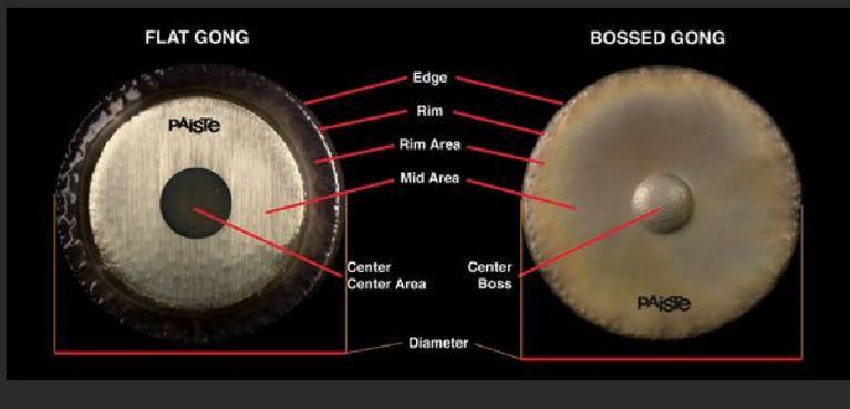 Figure 3: Gong Anatomy (Paistegongs.com)