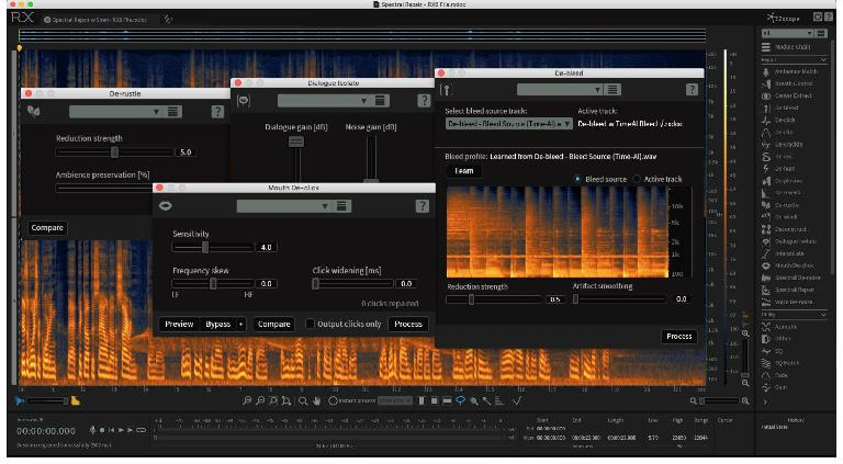 iZotope's RX provides audio repair, one of the few tasks not addressed by Logic's built-in plug-ins