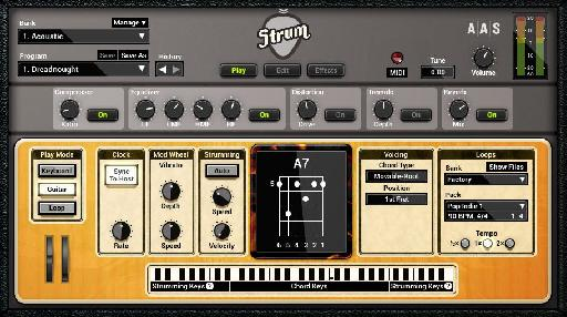 Strum GS-2 Acoustic screen.