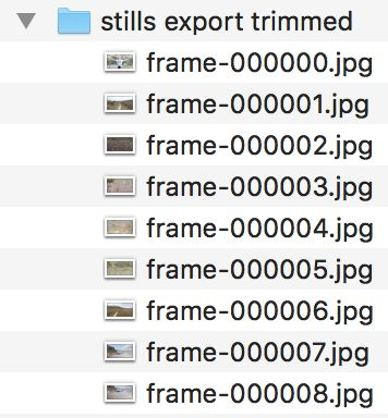 Exporting to an Image Sequence gives you all these images, in one hit