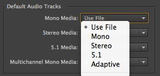 default audio tracks