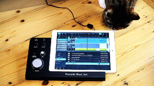 Even cats like the iTrack Dock.