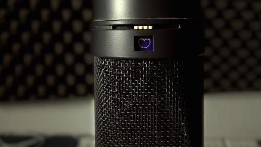 Neumann U87 microphone set to cardioid.