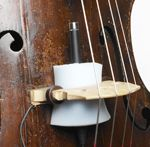 Fig 6 An upright bass with a mic wedged into the bridge, for better isolation in noisy environments (courtesy of DPA Microphones).