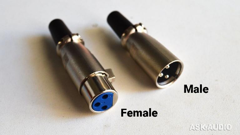 female male XLR