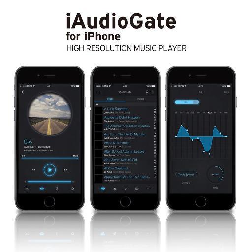 Korg iAudioGate.