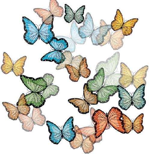 Butterflies after staining and screening.