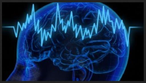 Pic. 1 – Brainwave Image.