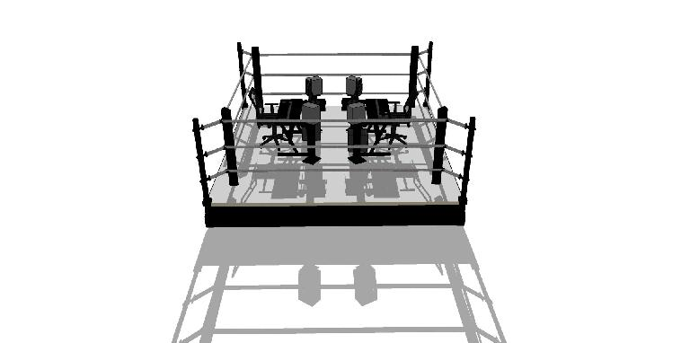 music producers in the boxing ring