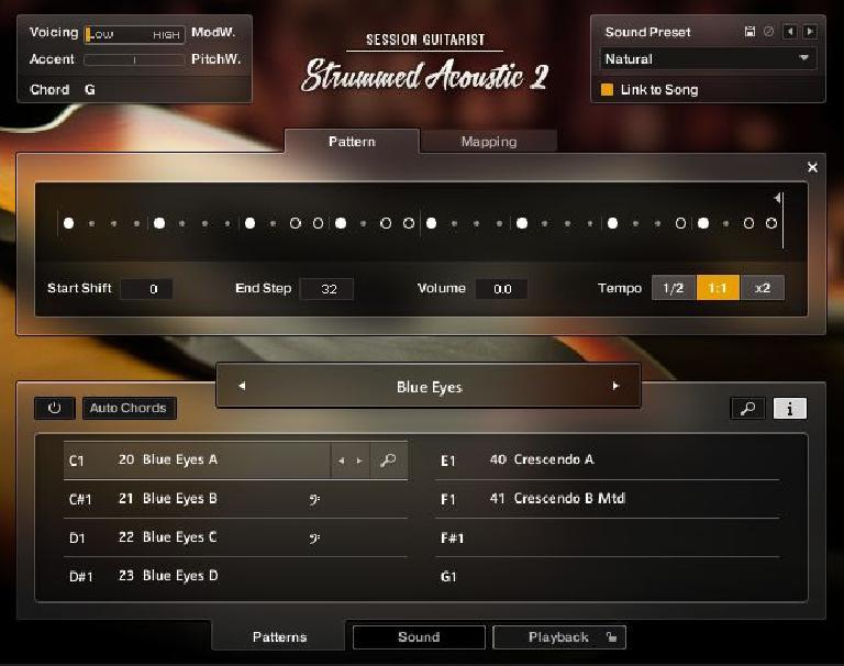 NI Strummed Acoustic 2
