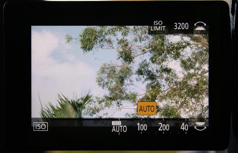 Love using Auto ISO with a controllable maximum ISO