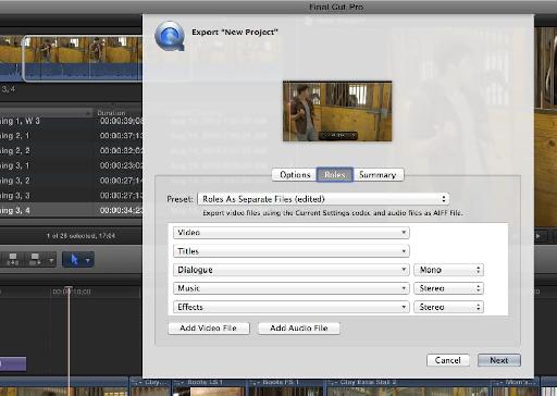 Exporting the movie
